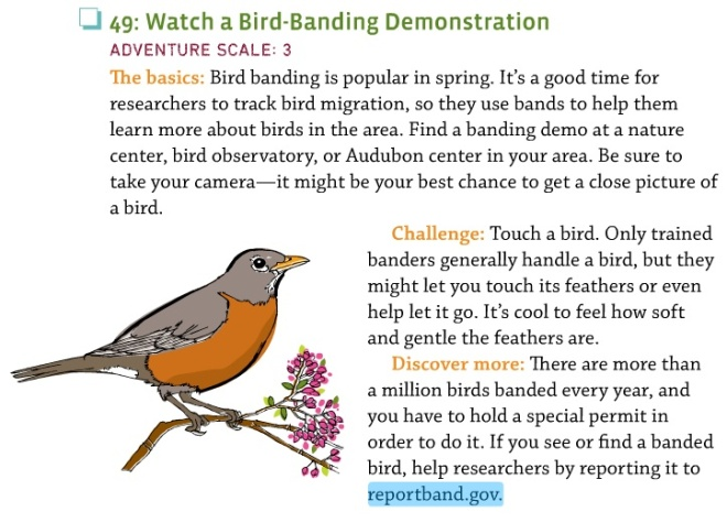 448bookbirdbanding