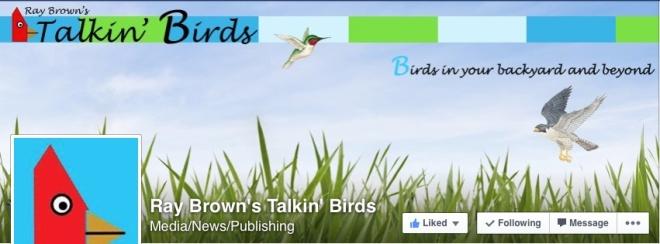 RayBrown'sTalkin'Birdsscreenshot