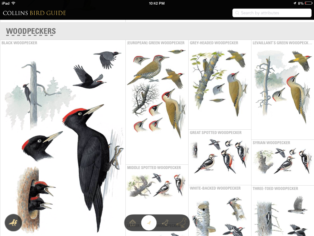 review the collins bird guide app prairie birder rh prairiebirder com collins bird guide download collins bird guide android