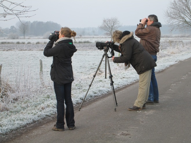 Here we are looking for a Common Snipe that didn't want to be found.